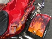 True Fire Skull Trike heckfender