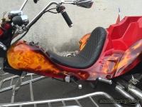 True Fire Skull Trike tank