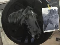 Airbrush wheelcover Pferd