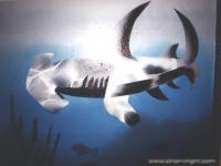 Hammerhai-1