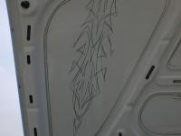 Pinstriping 10 Bora Motorhaube 2