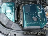 Pinstriping 9 Audi